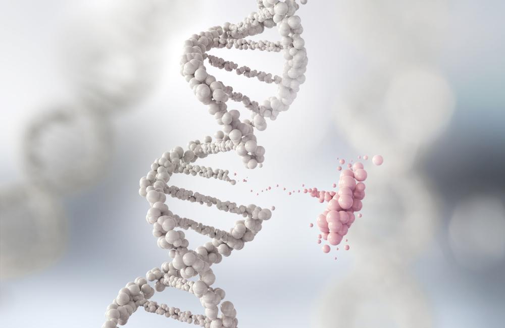 Cancer DNA Cancer Genes Breast Cancer